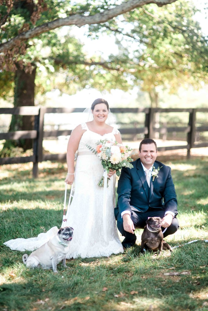 wedding portrait with pugs dogs charlotte nc